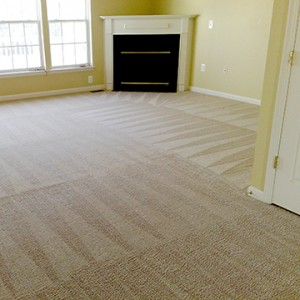 The process from quote, setup, cleaning to invoicing was done in a straightforward manner. Best carpet cleaners ...